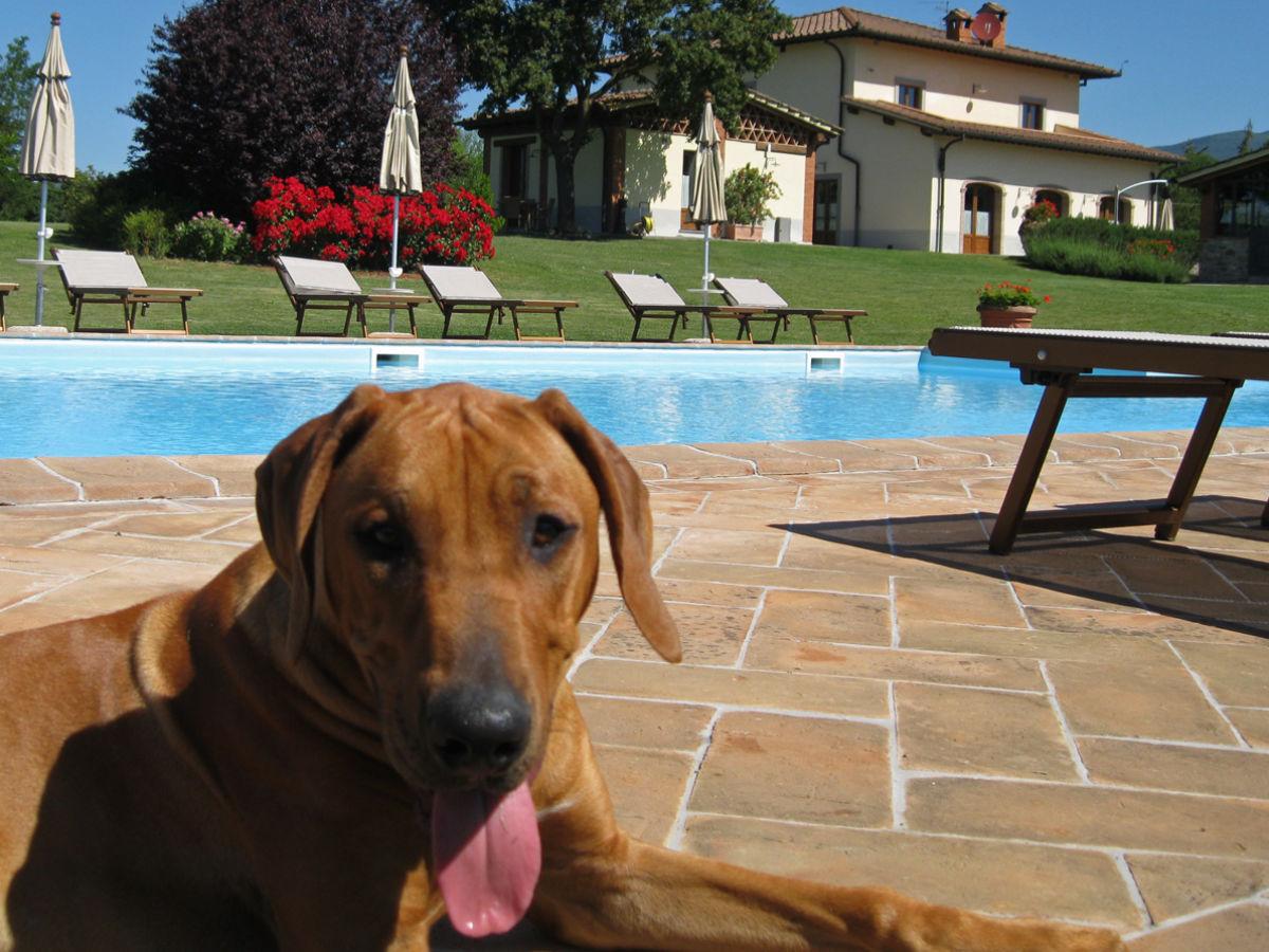 Villa Toskana Pool Tennisplatz