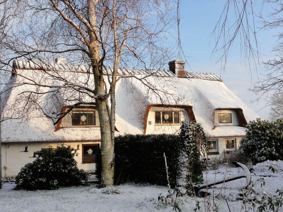Frischer Schnee auf dem neuen Reetdach