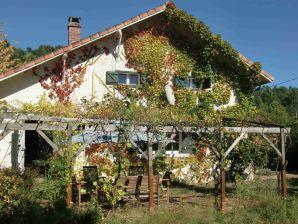 Ferienhaus Vieux Contis Plage