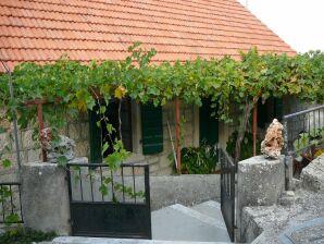 Ferienhaus NOA in Skrip
