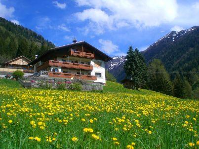 Waldruhe in Haus Alpegger