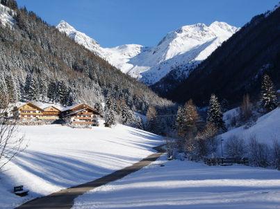 Waldruhe im Haus Alpegger