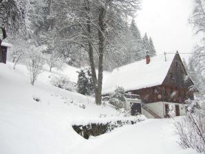 Ferienhaus Warratz