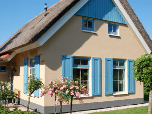 Ferienhaus T6A - Texel