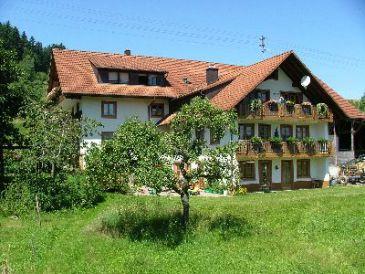 Ferienwohnung I Haus Dreher Bio- Bauernhof
