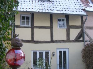 """Holiday house Old town house """"Little Swan"""""""