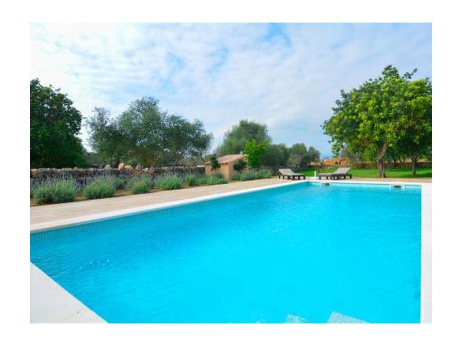 Poolbereich, der zum Entspannen einlädt