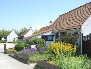 Ferienhaus Duinhoek 85