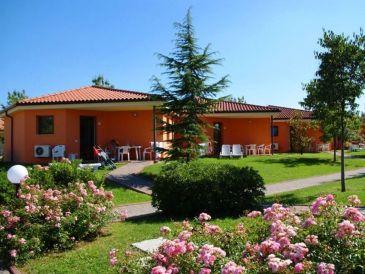Ferienhaus Bella Italia - Oleandro (1293)