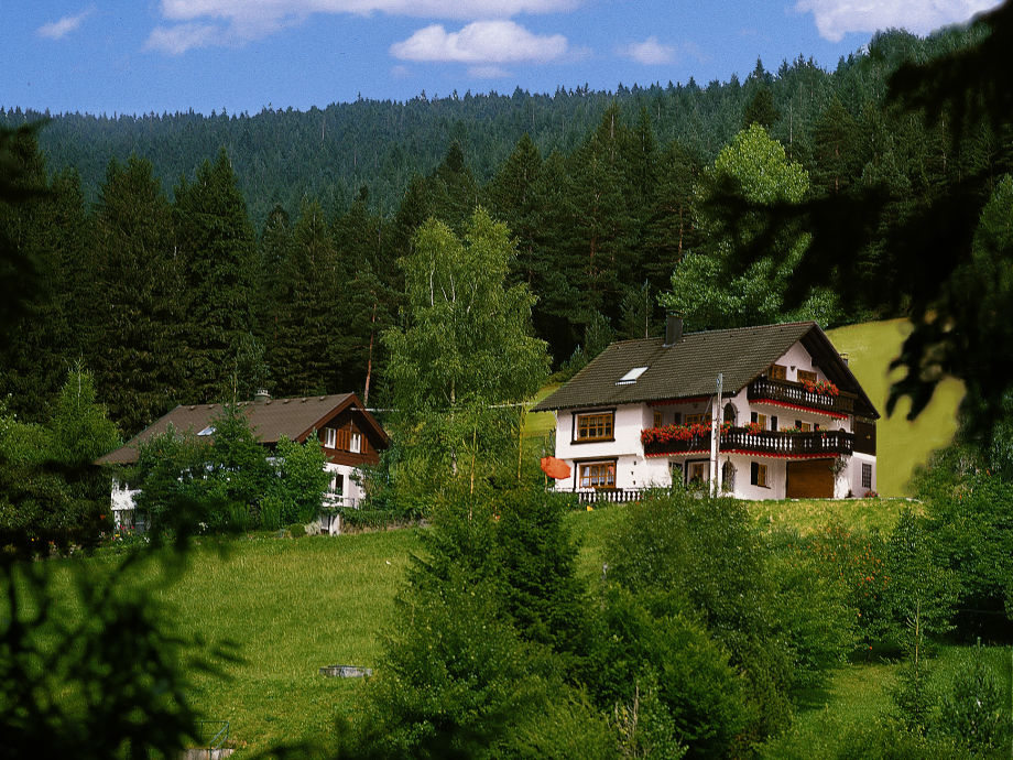 """das """"kleine Ferienparadie""""  Haupthaus mit landhaus"""