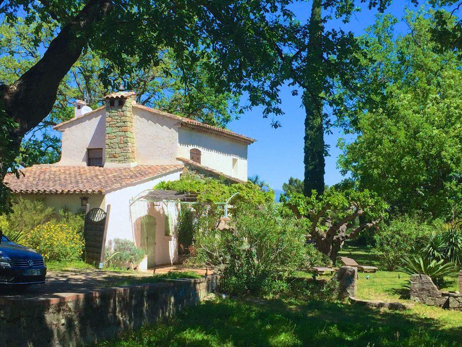 Außenaufnahme Mimosa - Roquebrune-sur-Argens