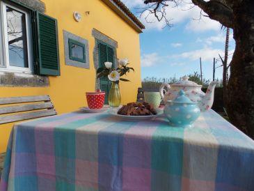 Ferienhaus Casa Bouganvillea