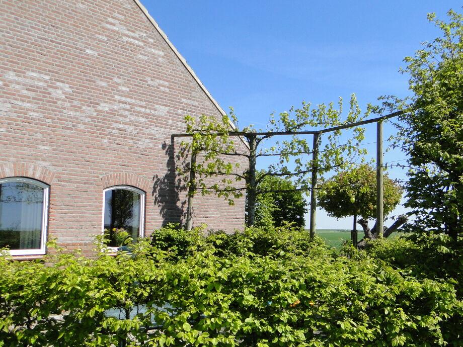 Außenaufnahme Kattendijke - ZE523