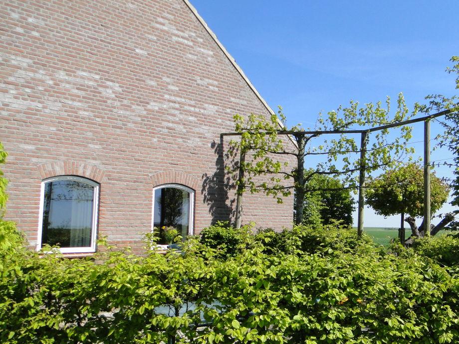 Außenaufnahme Kattendijke - ZE524