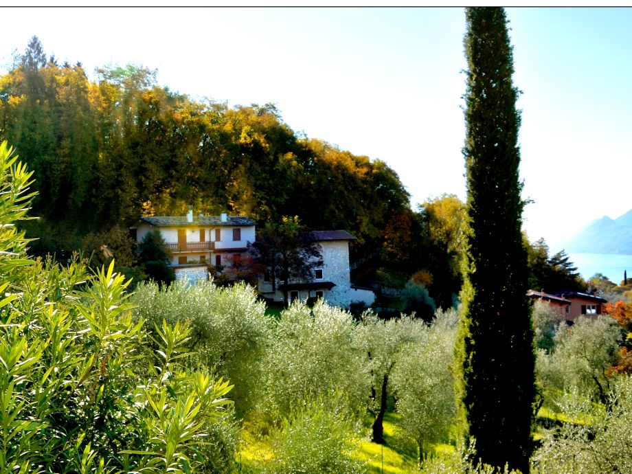 Außenaufnahme Il Boschetto Bussard