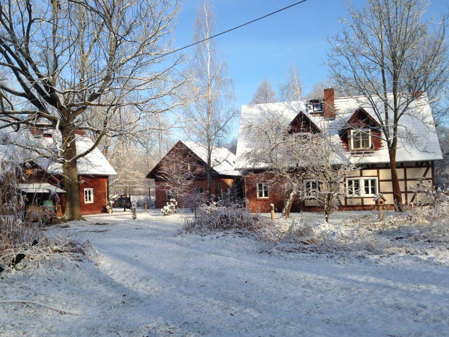 Winter im Spreewald