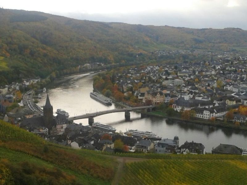 Holiday apartment View of the Moselle