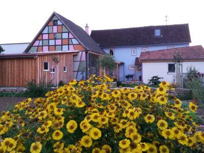 auf dem Kimmelsbacher Hof