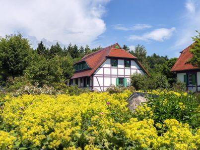 Meeresurlaub-Rügen Ferienwohnung Arkonaschwalbe A49