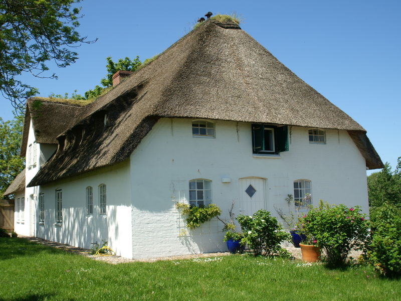 Holiday house Poppenbüll thatched house