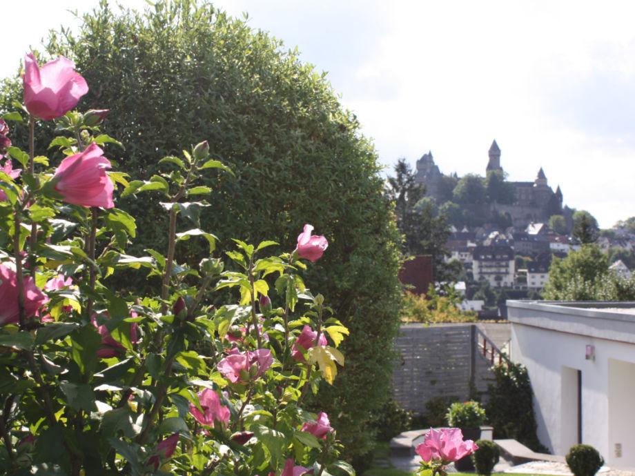 Schlossblick auf Schloss Braunfels