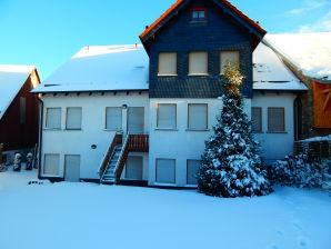 Ferienhaus Reinhart / große Ferienwohnung