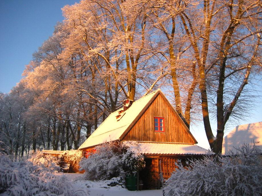 Wintertage laden zum Spazierengehen ein