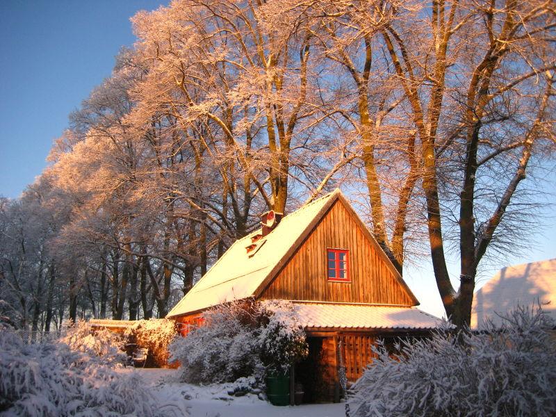 Holiday house Rohrdommel