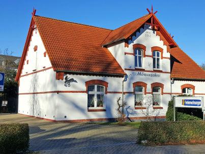 Graumöwe im Haus Möwenschrei