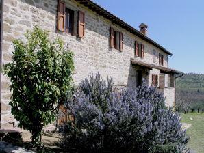 Villa Fatima