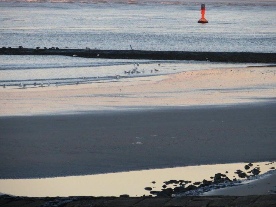 Conocer gente en playa del carmen