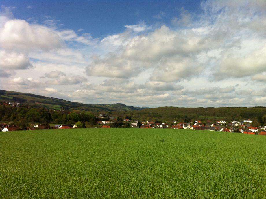 Blick auf Primstal