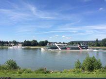 Ferienwohnung 5 Rheinblick