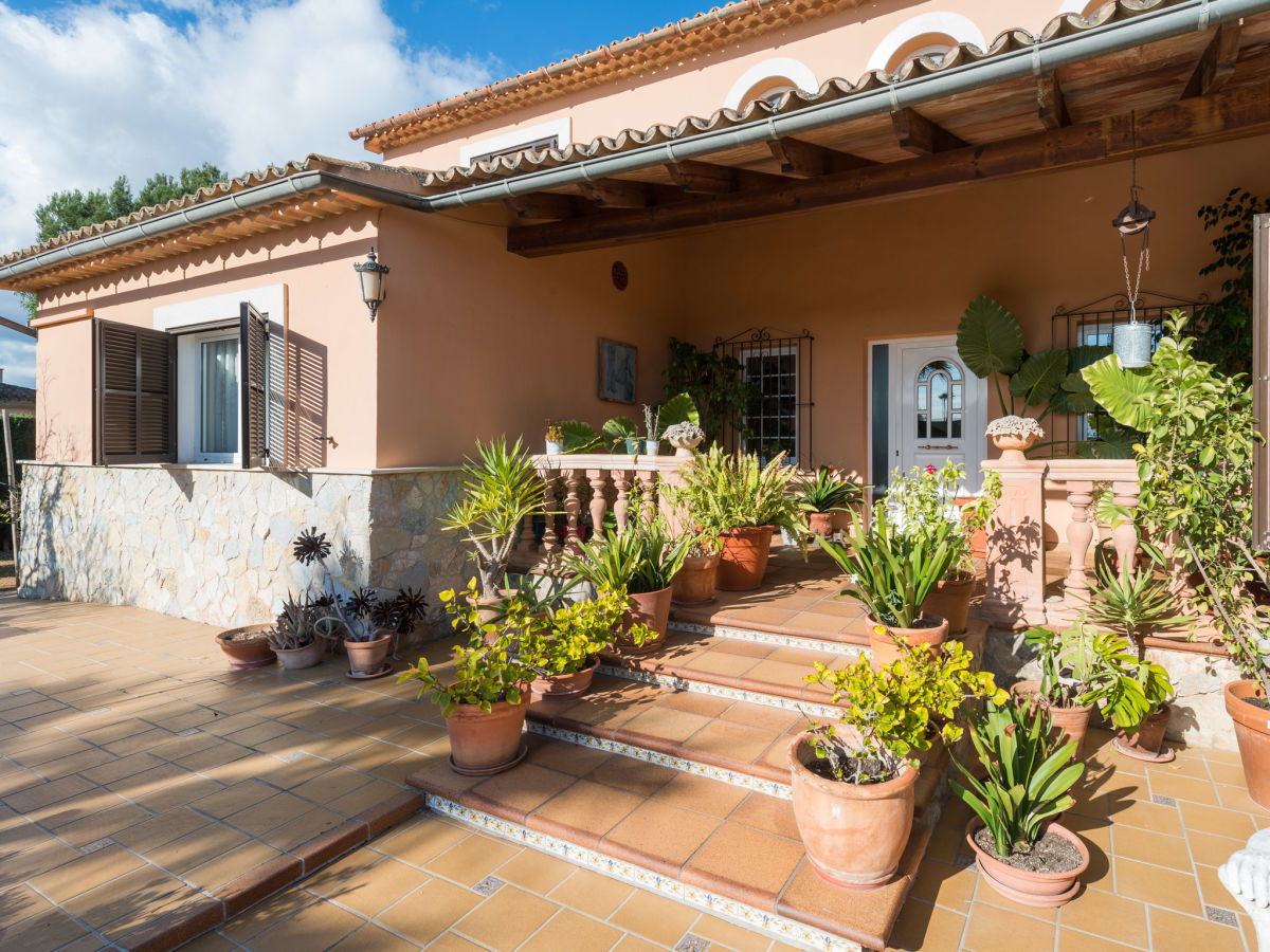 Villa garrovereta mallorca marratxi firma villafinca for Pflanzen terrasse