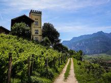 Farmhouse Ansitz Dornach