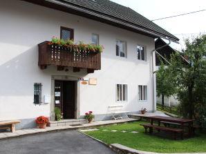 Ferienhaus Prezelj 6
