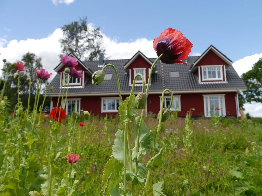Unser wunderschönes Doppelhaus vom Garten gesehen