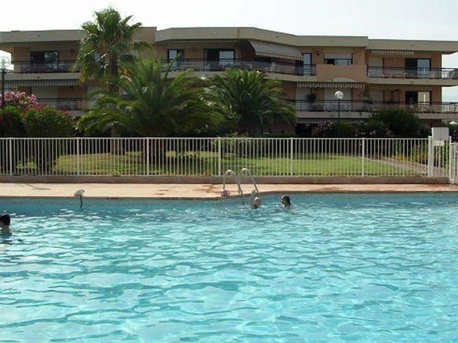 Grosser Pool zur Erfrischung und Fitness