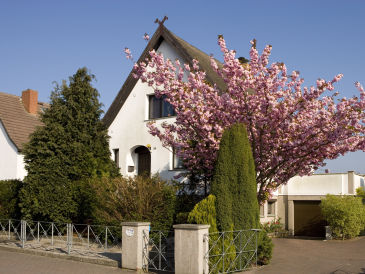 Ferienhaus kur-sommer