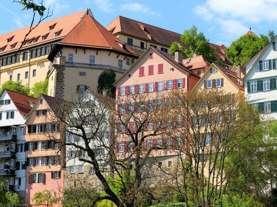 Han søker dem Tübingen