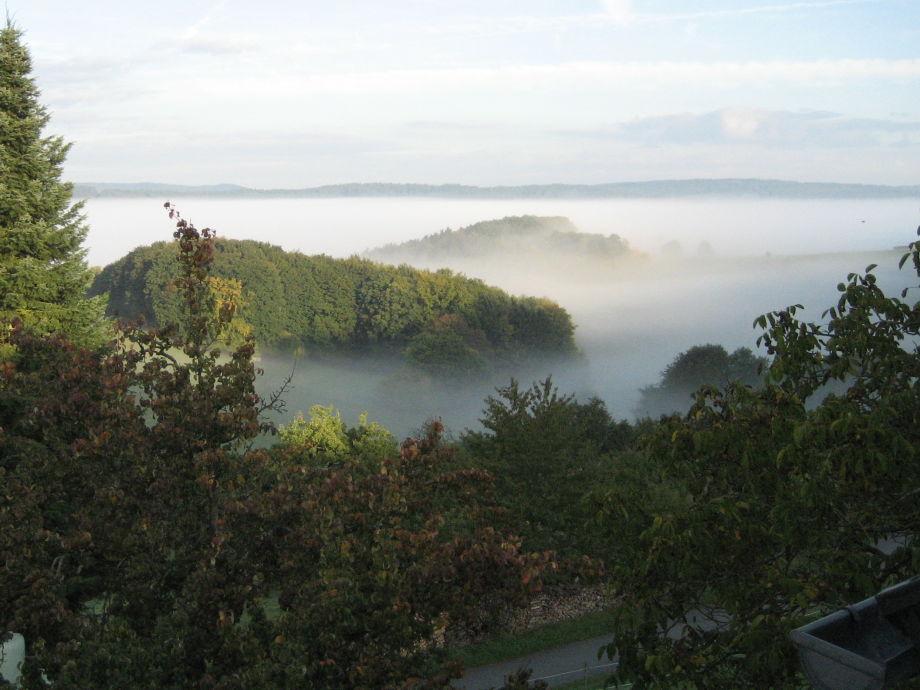 Blick über die Nebel