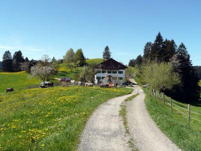 auf dem Ferienhof Schweizer