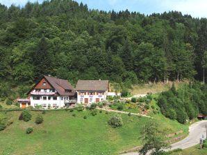 ferienh user ferienwohnungen in den bergen im schwarzwald in den bergen schwarzwald. Black Bedroom Furniture Sets. Home Design Ideas