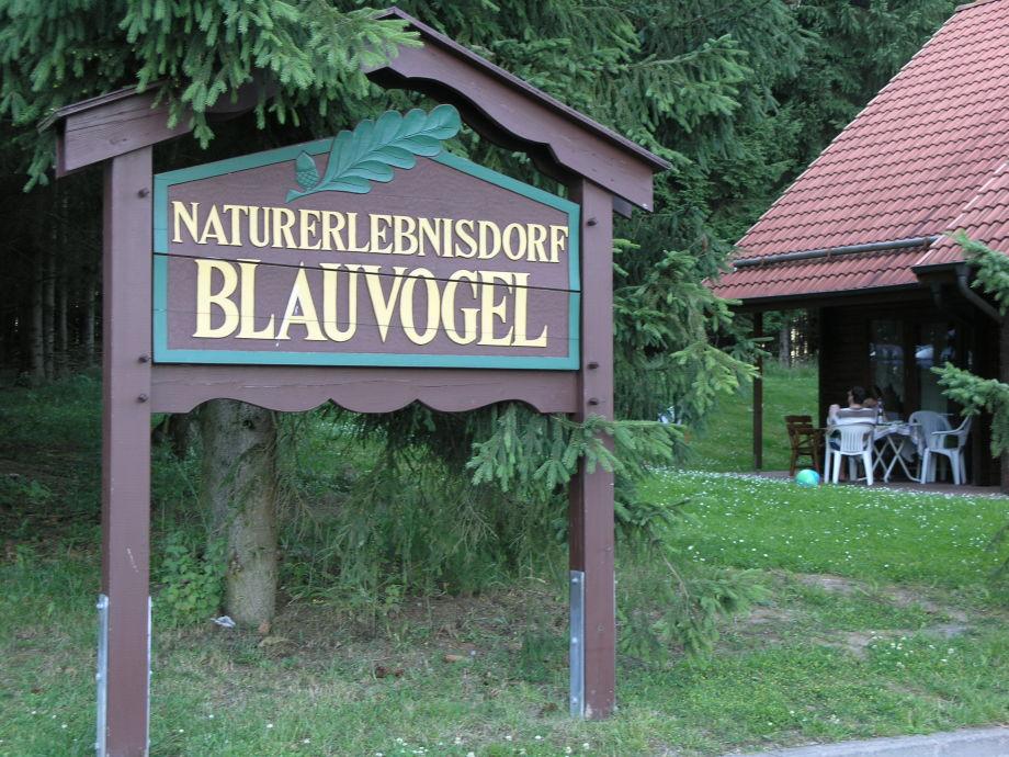 Willkommen im Naturerlebnisdorf Blauvogel