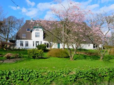 Ferienwohnung Köhler - Hof