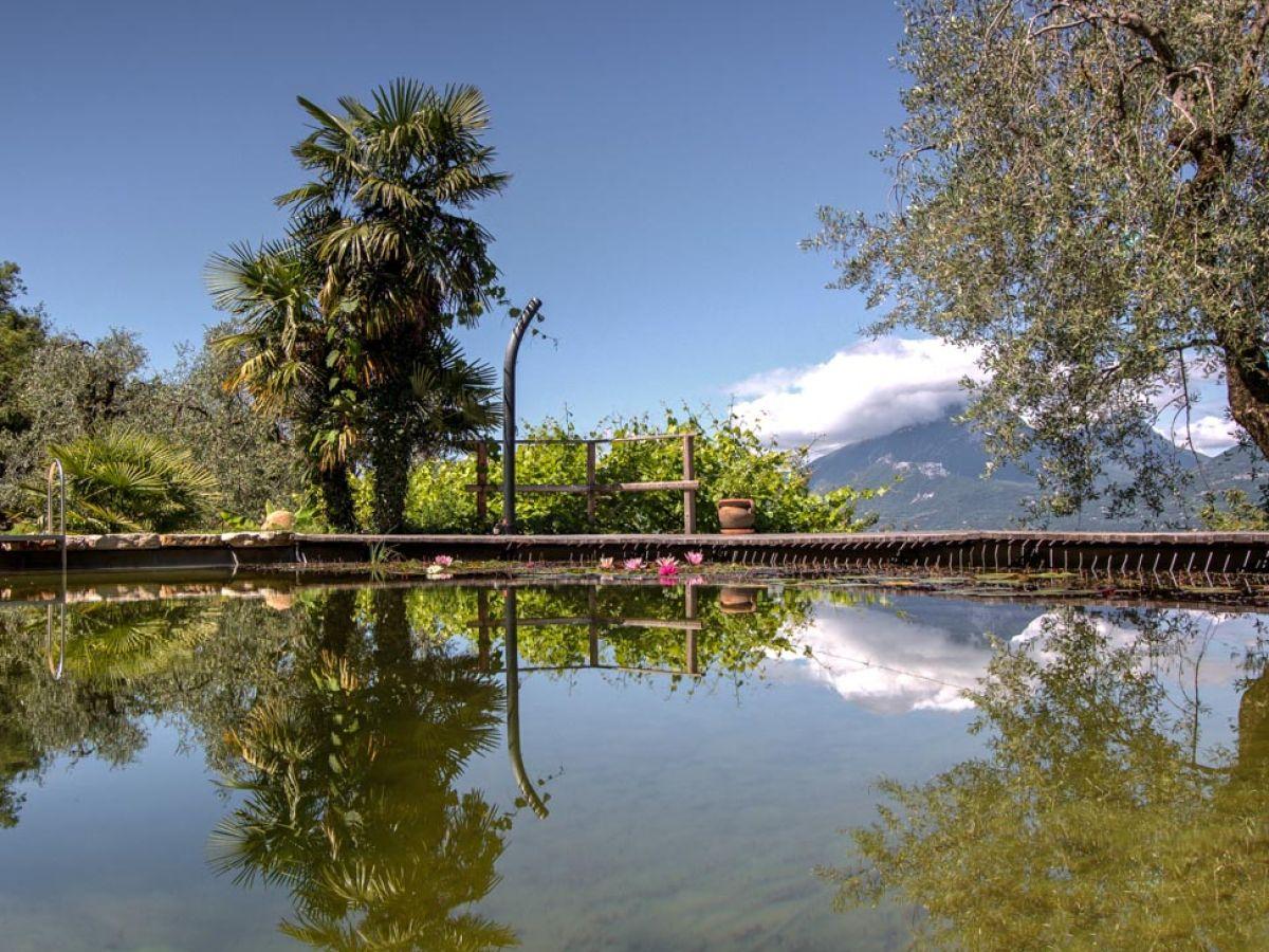 Villa castelletto venetien gardasee firma hofer for Naturteich zum schwimmen