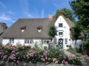 Ferienhaus Objekt 63