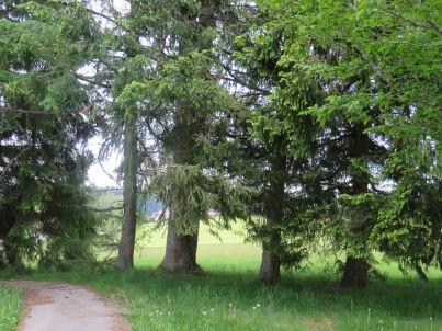 im Schwarzwaldhaus Engel