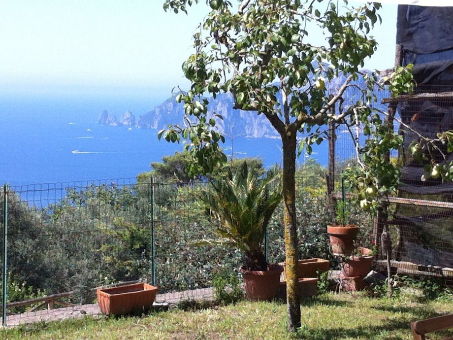 Garten mit Aussicht Capri