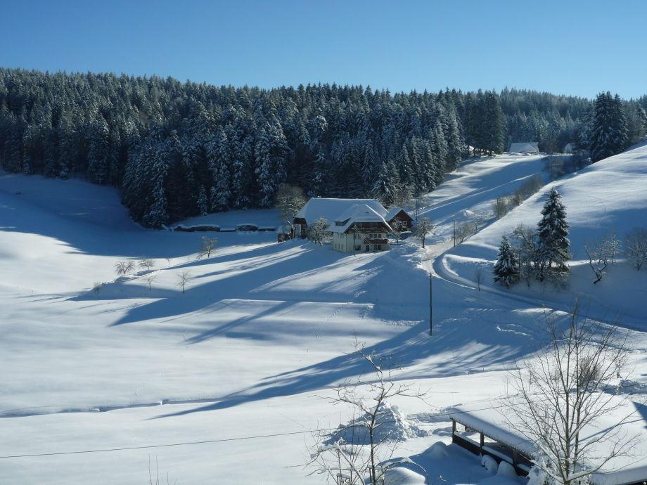 Mooshof im Winter